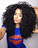 Maxine 9A Mongolian Afro Human Hair Lace Front Wig Afro Kinky Curly Wigs Heat Resistant Hair for Black Women 130% Density(10 inches)
