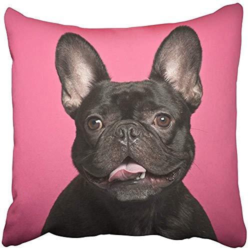 GFGKKGJFD507 - Fundas Decorativas para cojín de Perro Negro con diseño de Bulldog francés contra la Lengua Rosada y marrón, diseño de Animales