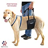 GingerLead Dog Support & Rehabilitation Harness with Cutout - Medium/Large Sling; Assist Senior or Disabled Pets; Ruptured Cruciate Ligament, Hip or Back Surgery Recovery Aid; for Male/Female Dogs