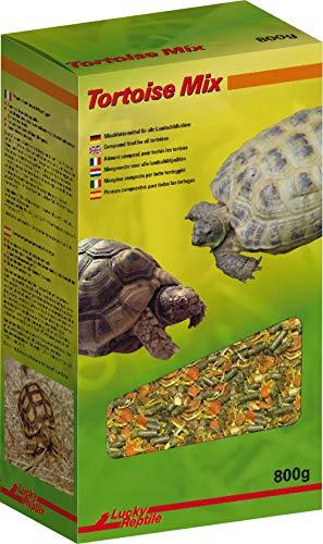 Lucky Reptile Tortoise Mix 800 g Nourriture pour Tortues terrestres