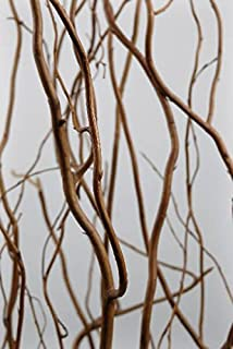 Richland Natural Curly Willow Branches 3'-4' Bundle Set of 6