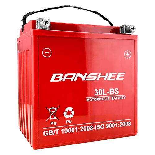 Banshee Replacement Battery For YTX30L-BS Fits BRP (SEA-DOO) 1500 GTX 4-Tec 2006