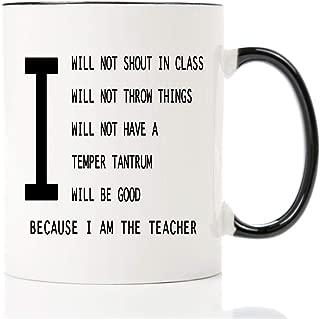 Funny mug-I will good teacher-11 OZ coffee mug,best school new male teacher gag gifts for christmas ideas personalized her men women