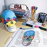 Zoom IMG-2 gima 40157 modello craniolinea value