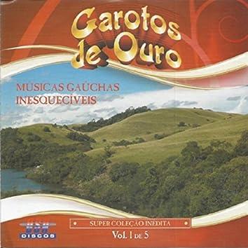 Músicas Gaúchas Inesquecíveis, Vol. 1