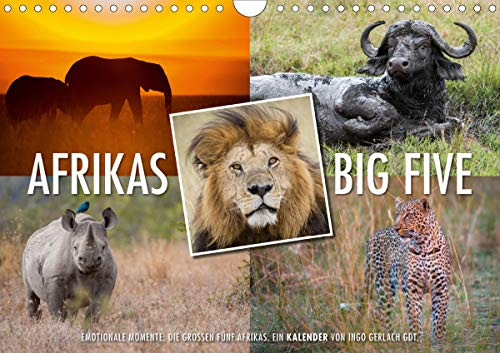 Emotionale Momente: Afrikas Big Five/CH-Version (Wandkalender 2021 DIN A4 quer)