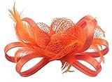 Fascigirl Pillbox Hut Blume Fascinator Korsage Brosche Pin Haarspange Feder