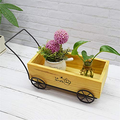 G-HJLXYZWJHOME Rustieke manier van creatieve sappige bloemenstand-loopkatten-decoratiestand-houder-massief houten tentoonstellingstaanders [2 stuks]