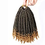 6 Packs Short Crochet Box Braids Curly Ends 10 Inch Bohemian Box Braids Crochet braids for Black Women (T27, 10 Inch)