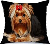 Funda de almohada Nice Beautiful Yorkshire Terrier Grace en negro...