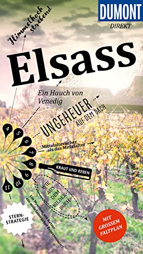 DuMont direkt Reiseführer Elsass: Mit großem Faltplan (DuMont Direkt E-Book)