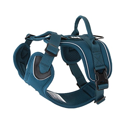 Hurtta Active Dog Harness, Juniper, 24-32 in
