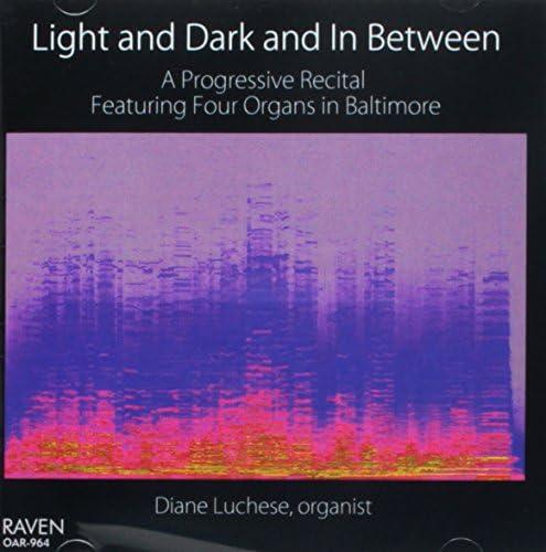 Light Dark in Between product image