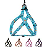 CollarDirect Floral Dog Harness Nylon Pattern Flower Print Step-in Soft Adjustable Pet Harnesses for Dogs Small Medium Large Puppy (Large, Aquamarine)