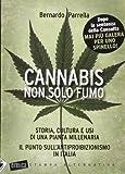 Cannabis non solo fumo. Storia, cultura e usi di una pianta millenaria. Il punto...