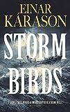 Storm Birds (English Edition)