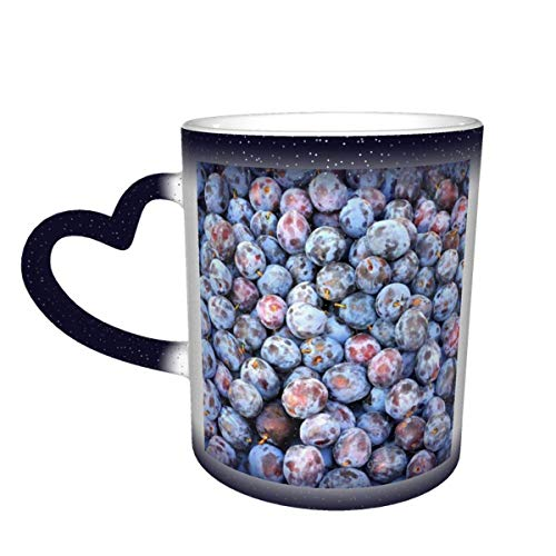 Plum Food Berry Fruits Color Changing Mug in The Sky Ceramic Mug Coffee Cup Christmas Birthday Gift