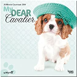My Dear Cavalier 18-Month Calendar 2014 (By Myrna) (多言語) カレンダー[Browntrout Publishers/Amazon]
