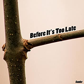 Before It's Too Late