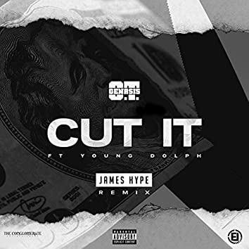 Cut It (feat. Young Dolph) [James Hype Remix]