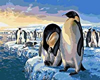 WJYMJJ ペイントバイナンバー 大人用 ペンギン DIYキャンバス油絵キット デジタルペインティング ホームリビングルーム装飾絵画 16x20 インチ