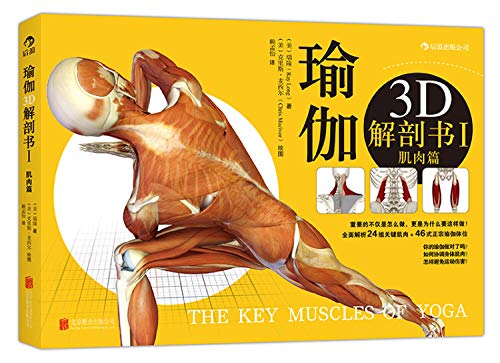Yoga: 3D anatomy book one (muscle articles)(Chinese Edition)