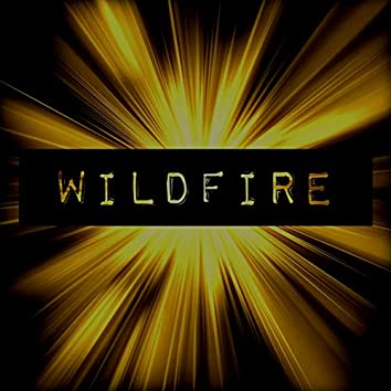Wildfire (Nicky Rolly Remix)