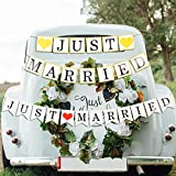 Tatuo 2 Sets Just Married Wedding Banners Bunting Garland Photo Props Signs with Heart for Bridal Shower Wedding Party Decoration