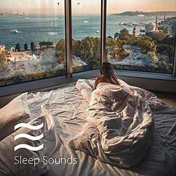 Babies Deep Sleepful Shushing Noisy Lullabies