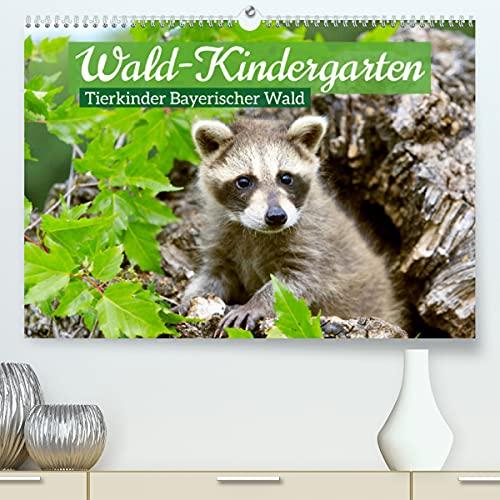 Wald-Kindergarten: Tierkinder Bayerischer Wald (Premium, hochwertiger DIN A2 Wandkalender 2022, Kunstdruck in Hochglanz): Tierbaybys begeistern viele Naturfreunde im Nationalpark Bayerischer Wald (Mon