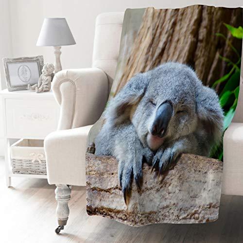 NIUJINMALI Süßer Koalabär einzigartig super weicher Plüsch gemütlich warm Flanell Überwurf Decke für alle Jahreszeiten für Couch Bett Sofa Camping Kinder Erwachsene 203,2 x 152,4 cm