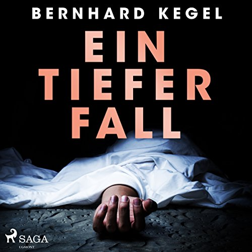 Ein tiefer Fall audiobook cover art