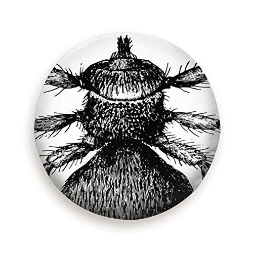 Ovejas KED Piojo sin alas Fly That Art Vintage Tipo de neum�