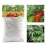 Dsaren Red de Enrejado de Plantas Poliéster Red de Jardin Soporte Plantas Trepadoras para Fruta Guisante Tomates Vegetal Flores (1.67 x 10M)
