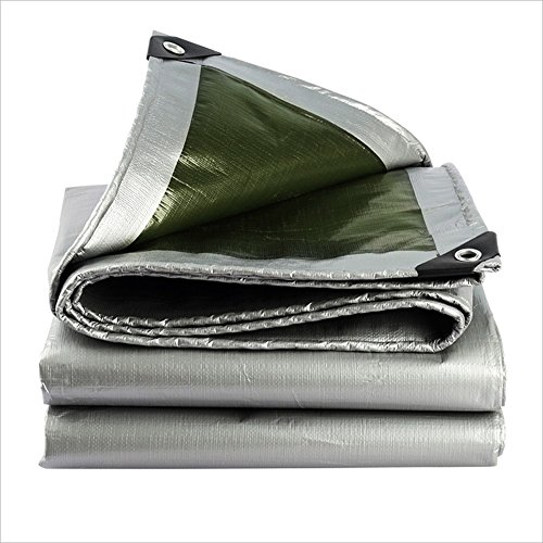 JXXDDQ Lona impermeable más gruesa para exteriores, ligera y fácil de llevar, lona para sombrilla para camión, una variedad de tamaños (color: plateado + verde, tamaño: 4 x 6 m)