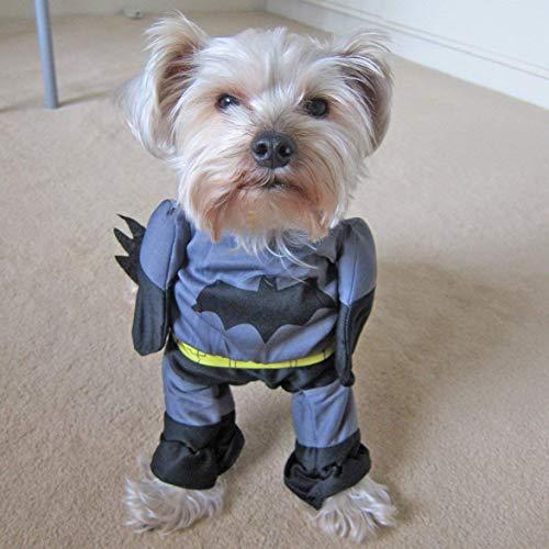 Alfie Pet - Superhero Costume Batman - Size: M - http://coolthings.us
