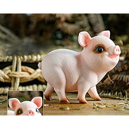 Starbluegarden Amusing Mini Jubilant Pig Statue Figurine Ornament Fairy Garden Decor Bookshelf Flowerpot Collection 2 Home Kitchen