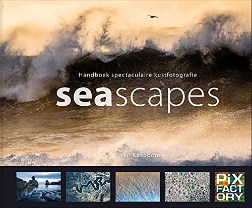Seascapes: handboek spectaculaire kustfotografie