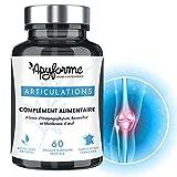 Douleurs Articulaires & Articulations • Glucosamine Chondroitine MSM, Boswellia Serrata, Harpagophytum • 1 Mois, 60 Gél. • Fabriqué en France par Apyforme