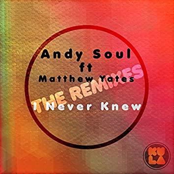 I Never Knew (The Remixes)