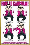 1art1 PSY Poster und Kunststoff-Rahmen - Gangnam Anleitung,
