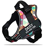 PawPawify Personalized No Pull Dog Harness with Custom Name and Phone Number, Heavy Duty Pet Vest to Prevent Tugging, Pulling, or Choking, Training and Walking