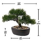 Zoom IMG-1 bonsai artificiale 22 9 cm