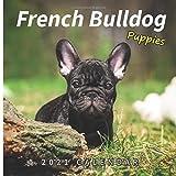 French Bulldog Puppies: 2021 Wall Calendar - Mini Calendar, 7