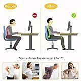 Zoom IMG-2 carttiya cuscino lombare sedia ufficio
