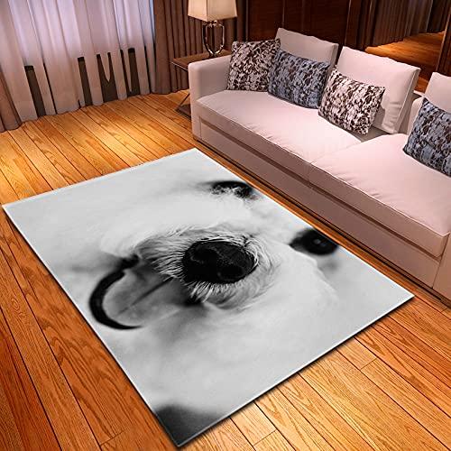 XuJinzisa Mascota Perro Moda Arte 3D Impresión Alfombra Suave Antideslizante Habitación De Los Niños Sala De Estar Dormitorio Alfombra Decorativa para El Hogar 180X180Cm H11540