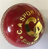 CA Cricket Ball Instinto Super Liga Cricket Ball Single