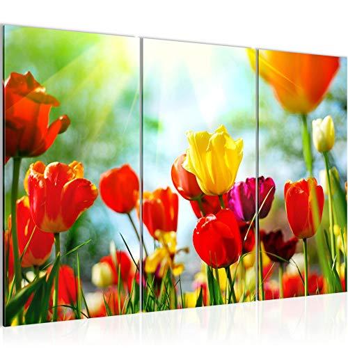 Runa Art Blumen Tulpen Bild Wandbilder Wohnzimmer XXL Bunt Blumenwiese Gräser 120 x 80 cm 3 Teilig Wanddeko 201931a