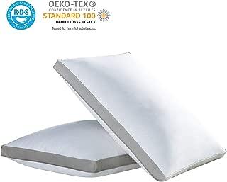 Best beyond down gel fiber side sleeper pillow queen Reviews