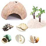 PStarDMoon Hermit Crab Shells- Natural Turbo Sea Shells Turbo Shells Hermit Crab with Coconut Hide Reptile Hideouts and Coconut Tree Ornaments for Beach Home Decor and Wedding Centerpieces (style1)